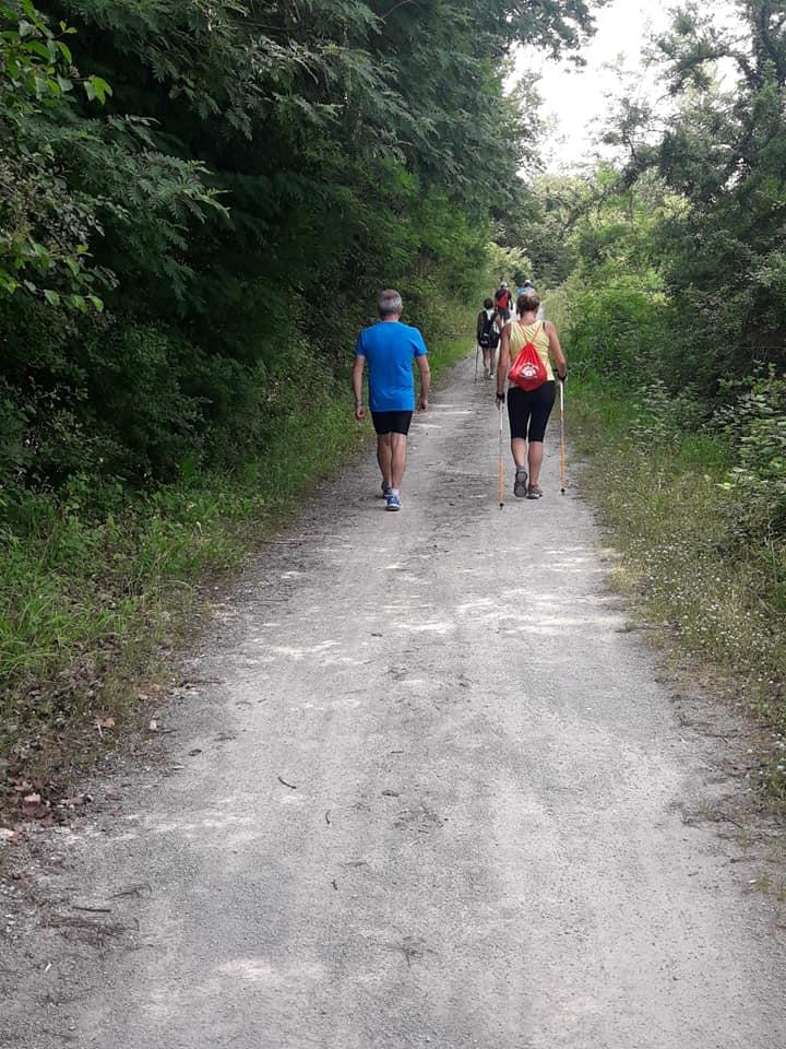 Walkers nella natura